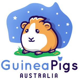 Guinea Pigs Australia